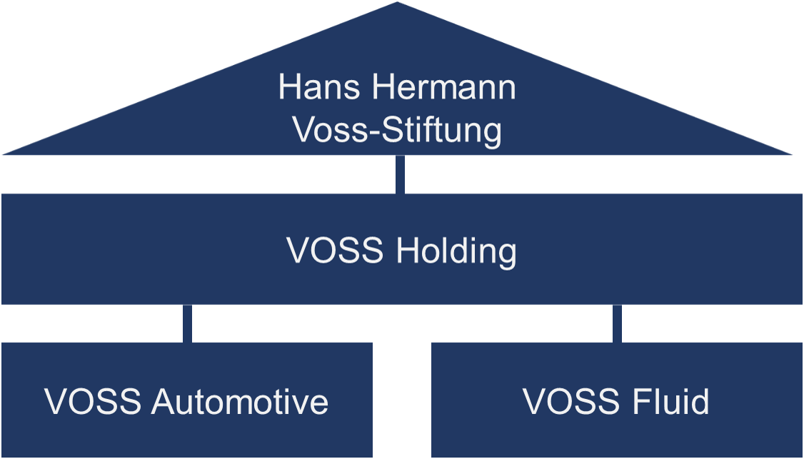 VOSS Group organization